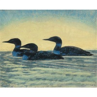 loons by thoreau macdonald