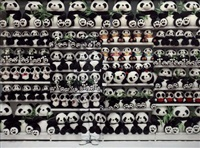 panda, de la série hiding in city by liu bolin