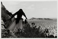 desierto de sonora, mexico by graciela iturbide