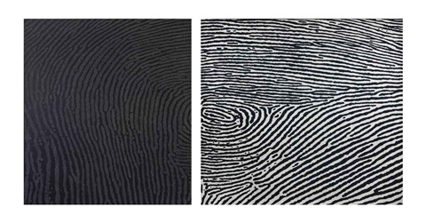 traces diptych by alwar balasubramaniam