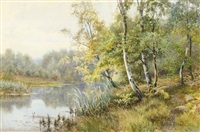 silver birchs on a wooded river bank by walter follen bishop