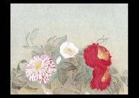 camellias by haruto yoshii