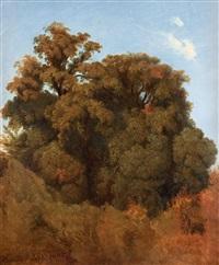 träd, arricia (study) by joseph magnus stack