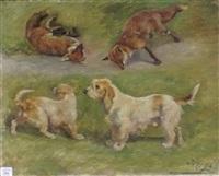 etude de renard et de chien griffons by jules bertrand gélibert