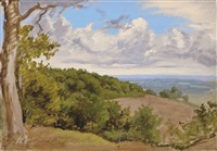 view near redhill, surrey (+ woodland near redhill, surrey, watercolor and chalk; 2 works) by william linnell