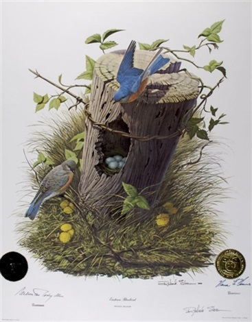 eastern bluebird 5 others 6 works from governors state bird prints series by richard sloan