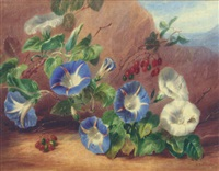 still life of morning glory (convolvulus) and berries by valentine bartholomew
