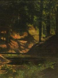 waldpartie mit kleinem gewässer. studie by carl august liner