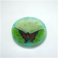 vide poches papillon by henri bergé