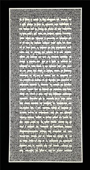 the other's writing (inverted) by pablo lehmann