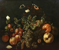 still life - an abundance of mixed fruit with butterflies and chaffinch by german school (18)