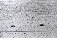 chars égyptiens de la guerre des six jours. col de mitla. 8 juin. by rené burri