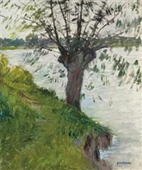 saule au bord de la rivière by gustave caillebotte