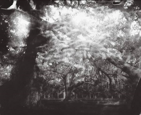 sally mann deep south photos
