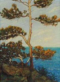 alberi sul mare by giovanni battista bassano