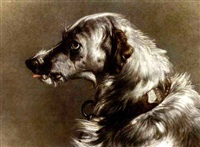 the head of a deerhound by james currie