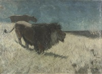 abendliche steppenlandschaft mit löwen by carl appel
