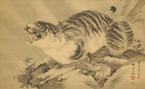 tiger by gantai