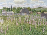 barn with foxglove by j. stanford perrott