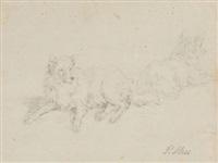 zwei liegend spitzhunde (study) by peter heinrich lambert von hess