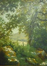 paysage dans la clairière by etienne leroy
