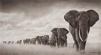 elephants walking through grass, ambroseli by nick brandt