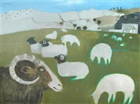 sheep in yorkshire by mary fedden