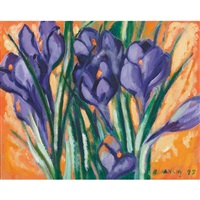 purple and orange crocus by rita briansky