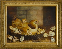 hen on a nest with sixteen chicks by ben austrian
