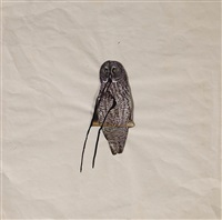 owl on branch by brett whiteley