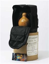 bottle pumpkin from perfect world by jason rhoades