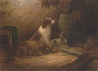 spaniels in a barn by g. bateman