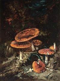 mushrooms on a forest bank by theo goedvriend