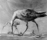 birds near the sea by frederick taubes