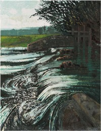 river otter weir by alan cotton