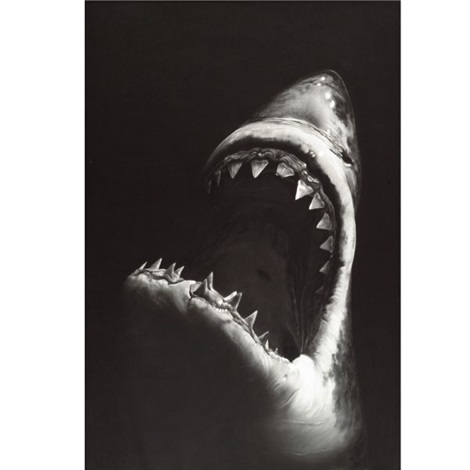 untitled shark 7 by robert longo