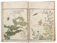 sôka ryakuga shiki méthode de dessins rapides de fl eurs et plantes (bk; 1 vol.) by kitao masayoshi