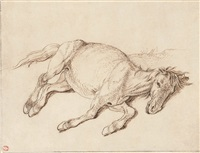 a horse lying down by sinibaldo scorza