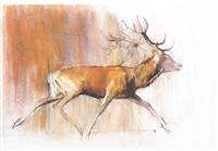 cerf courant by mark adlington