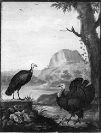 two turkeys in a classical landscape by j. f. hefele