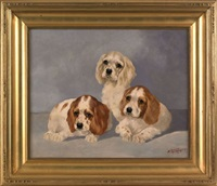 three spaniel puppies by duncan j. macgregor jr.
