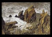 sound of waves by takashi asada