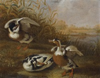 a shelduck in a landscape (2 works) by dirck wyntrack