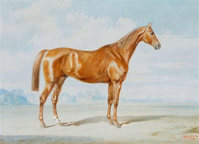 reitpferd brauner in einer landschaft by joseph heicke