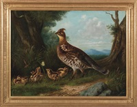 grouse and young by arthur fitzwilliam tait and howard l. hill