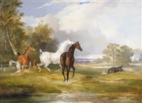 horses in a park, a country house beyond; horses in a paddock with riders beyond (pair) by francis calcraft turner
