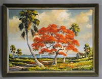 royal poinciana along the indian river by harold newton