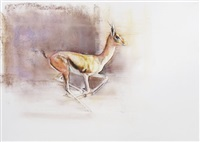 gazelle courant by mark adlington