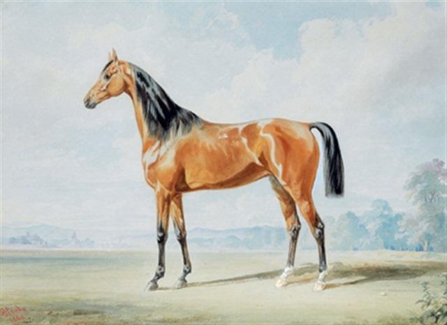 reitpferd (brauner) in einer landschaft by joseph heicke