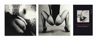 the polaroid collection: erotisches tagebuch, i, ii and iii (suite of 158) by günter blum
